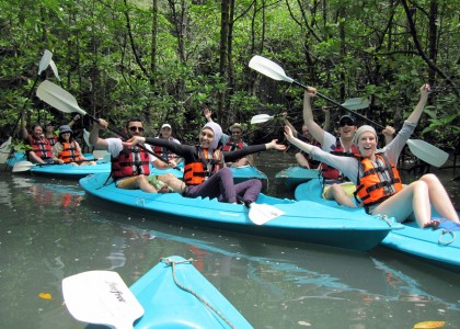 Mangrove Geopark By Kayak