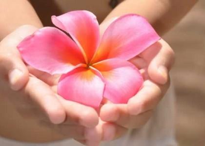Harmonizing Frangipani Massage